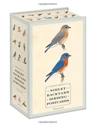 Sibley Backyard Birding Postcards: 100 Postcards  by  David Sibley