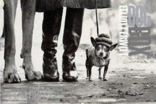 Dog Box - Horizontal Cards  by  Elliott Erwitt