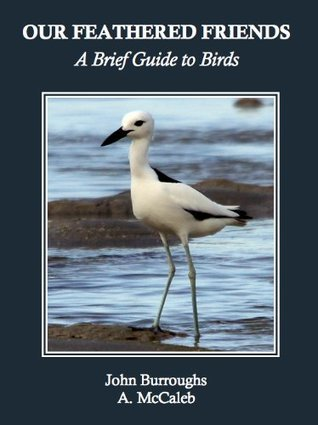 Our Feathered Friends: A Brief Guide to Birds A. McCaleb
