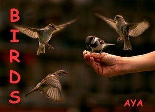 Birds Aya