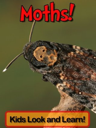 Moths! Learn About Moths and Enjoy Colorful Pictures - Look and Learn! (50+ Photos of Moths) Becky Wolff