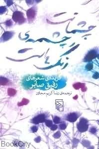 چشمانت چشمه رنگ هاست  by  رفیق صابر