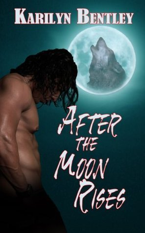 After the Moon Rises  by  Karilyn Bentley
