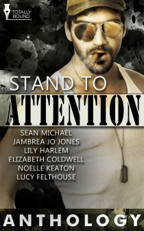 Stand to Attention  by  Sean Michael