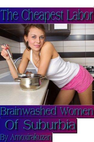The Cheapest Labor: Brainwashed Women Of Suburbia  by  Amoxirakuzan