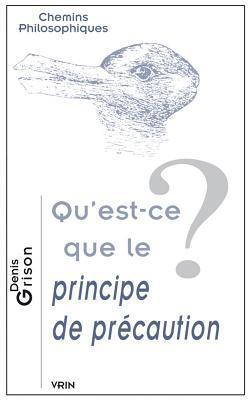 Quest-Ce Que Le Principe de Precaution?  by  Denis Grison