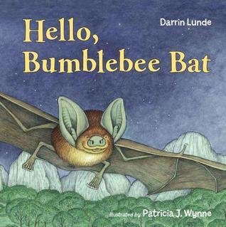 Hello, Bumblebee Bat Darrin Lunde