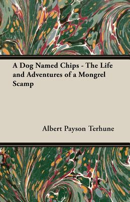 A Dog Named Chips - The Life and Adventures of a Mongrel Scamp Albert Payson Terhune