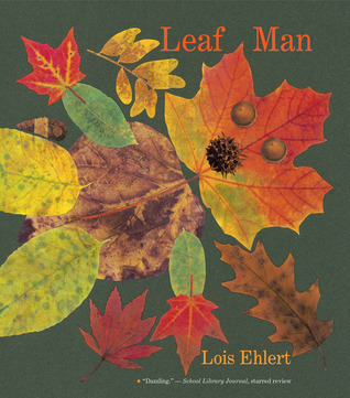 Leaf Man big book  by  Lois Ehlert