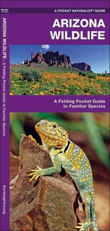 Arizona Wildlife: A Folding Pocket Guide to Familiar Species  by  James Kavanagh