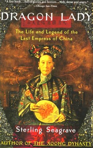 Die Soong Dynastie  by  Sterling Seagrave