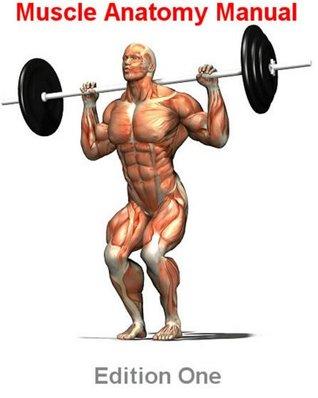 Muscle Anatomy Manual  by  Gareth Thomas