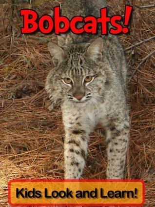 Bobcats! Learn About Bobcats and Enjoy Colorful Pictures - Look and Learn! (50+ Photos of Bobcats)  by  Becky Wolff