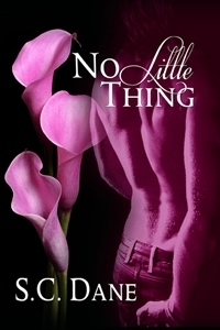 No Little Thing  by  S.C. Dane