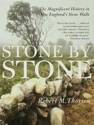 Stone Stone by Robert M. Thorson