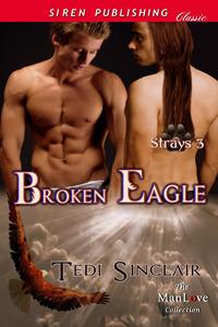 Broken Eagle (Strays #3)  by  Tedi Sinclair