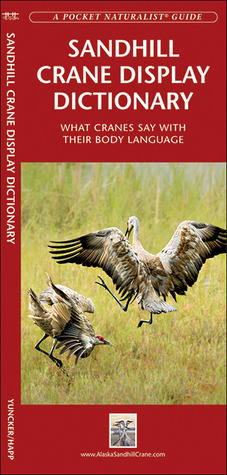 Sandhill Crane Display Dictionary: What Cranes Say With Their Body Language George Happ