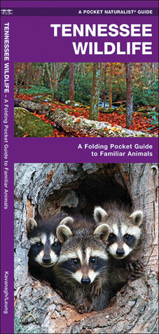 Tennessee Wildlife: A Folding Pocket Guide to Familiar Species  by  James Kavanagh