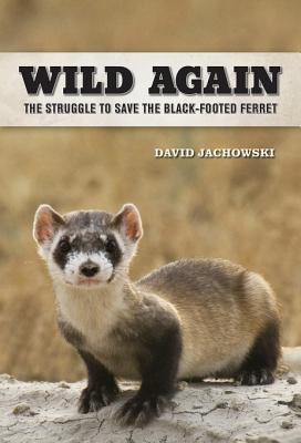 Wild Again: The Struggle to Save the Black-Footed Ferret  by  David S. Jachowski