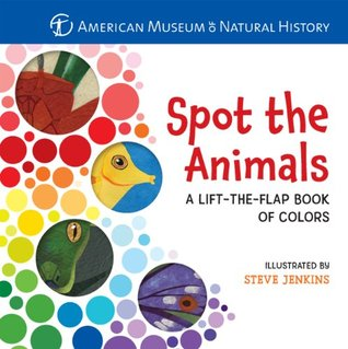 Asian Butterflies Perpetual Calendar American Museum of Natural History