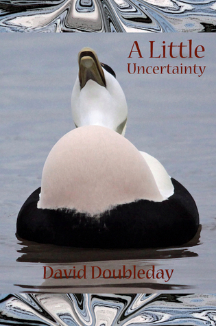 A Little Uncertainty  by  David Doubleday
