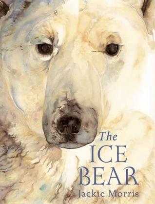 Ice Bear Mini Edition  by  Jackie Morris