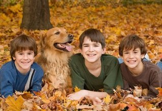 Four Seasons Dog Care: What Dog Owners Should Do As The Seasons Change Susan LaDue