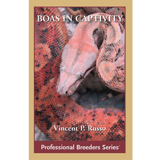 Boa Constrictors in Captivity  by  Vin Russo