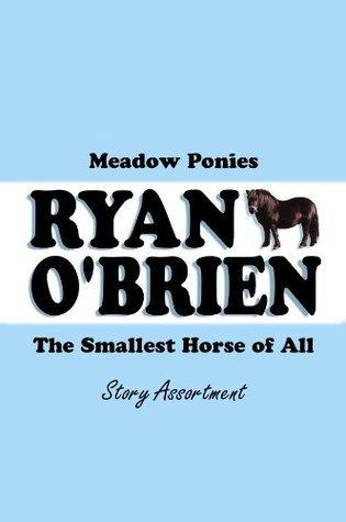 Ryan OBrien Meadow Ponies  by  Kathleen Mary Bokey