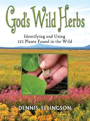 Gods Wild Herbs : Identifying and Using 121 Plants Found in the Wild Dennis Ellingson