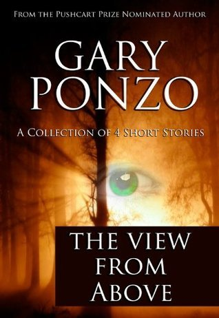 The View from Above  by  Gary Ponzo