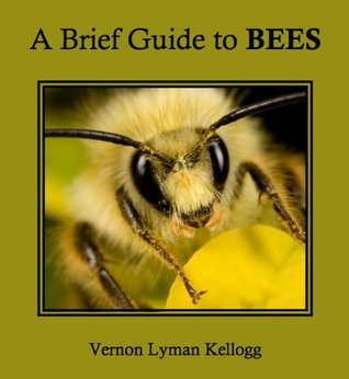 A Brief Guide to Bees  by  Vernon Lyman Kellogg