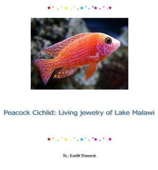 Peacock Cichlid : Living jewelry of Lake Malawi  by  Kasidit Wannurak