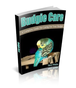 Budgie Care:  A Complete Guide For Caring For Your Budgie Harry Winkler