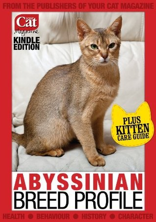 Abyssinian Cat Breed Profile Laura Hall