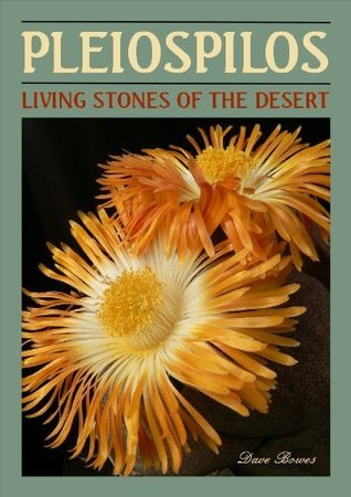 Pleiospilos Living Stones of the Desert  by  Dave Bowes