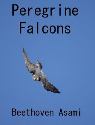 Peregrine Falcons  by  Beethoven Asami