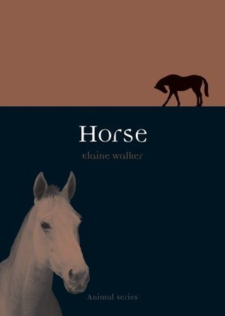 Horse  by  Elaine Walker
