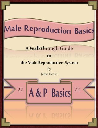 Male Reproduction Basics: A Walkthrough Guide to the Male Reproductive System Jamie Jacobs