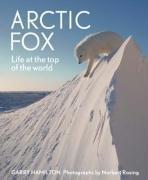 Arctic Fox Garry Hamilton