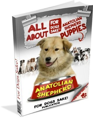 All About Anatolian Shepherd Puppies Jeremy Lawrence