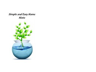 Simple and Easy Home Hints Eva Brownridge