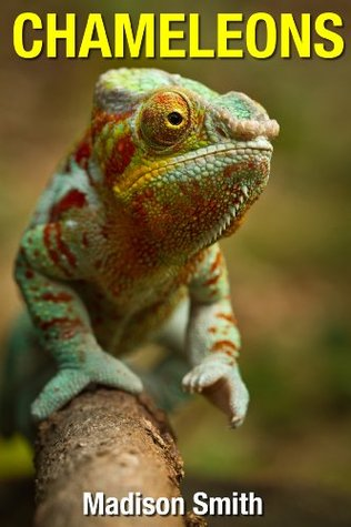 Chameleons: Fun Facts and Photos for Kids Madison Smith