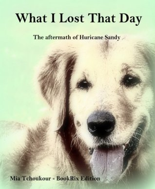 What I Lost That Day: The aftermath of Hurricane Sandy Mia Tchoukour