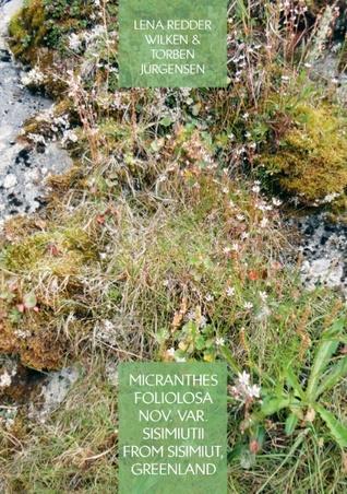 Micranthes foliolosa nov. var. sisimiutii  from Sisimiut, Greenland  by  Lena Redder Wilken