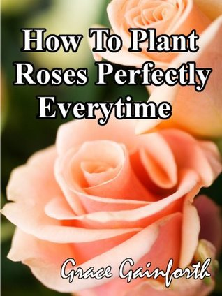 How To Plant Roses Perfectly Everytime  by  Grace Gainforth