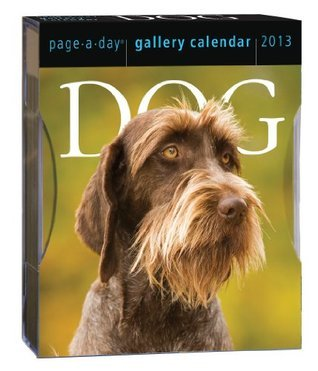 Dog 2013 Gallery Calendar  by  NOT A BOOK