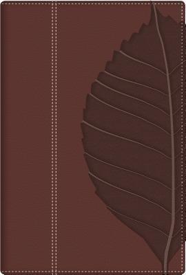 Biblia de Estudio: Vidas Transformadas-Rvr 1960  by  Warren W. Wiersbe