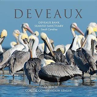 Deveaux: Deveaux Bank Seabird Sanctuary, South Carolina  by  Dana Beach
