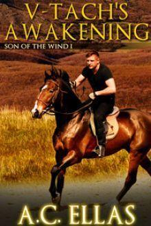 V-Tachs Awakening (Son of the Wind, #1) A.C. Ellas